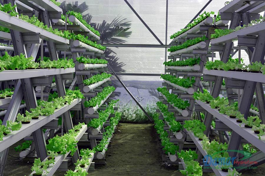 hidroponik tarım 1