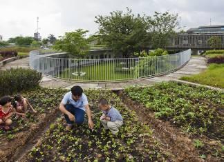 Doğaya dokunarak öğrenen çocuklar: Vietnam'ın sürdürülebilir anaokulu
