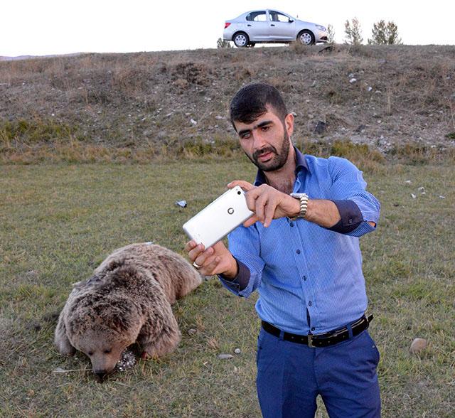 İki ayı, birkaç insan, bazı katiller ve üslupsuz haberciler: Türkiye'de hayvan hakkı