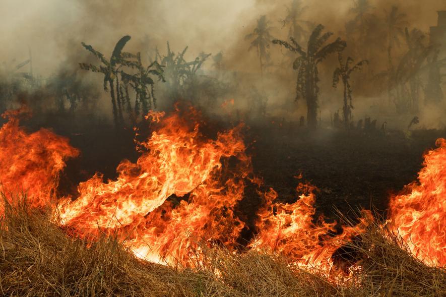 21. yüzyılın en büyük çevre felaketi Endonezya'da yangın ve pus 1