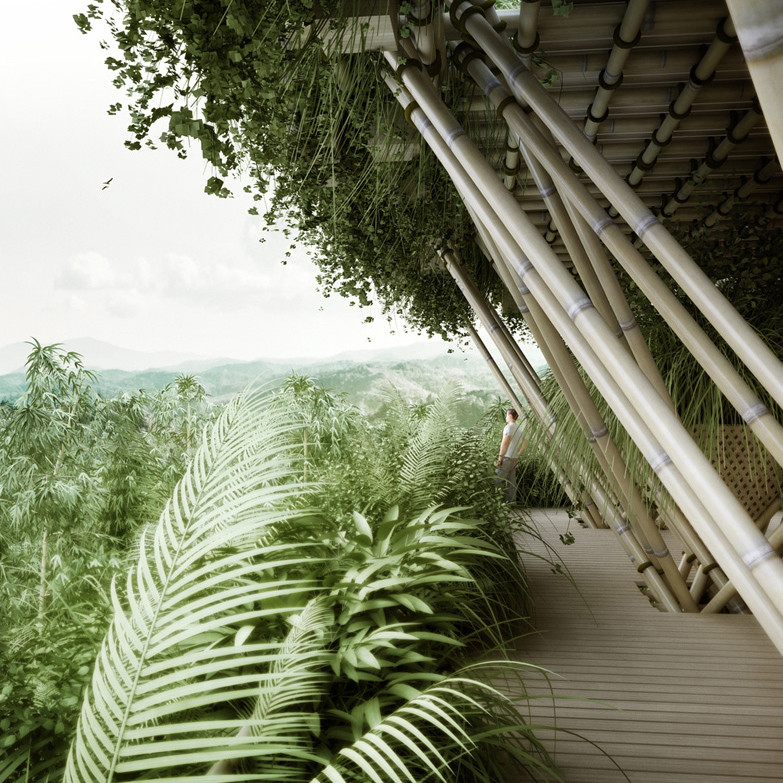 Bambu Şehirleri (2)