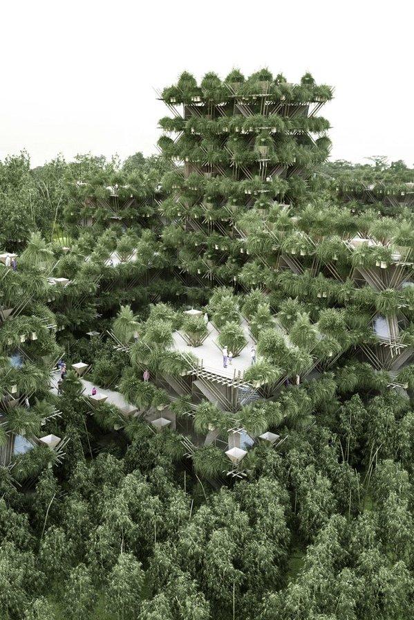 Bambu Şehirleri 4