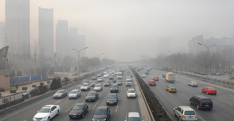 Düşük Karbon Salımı Günü 4