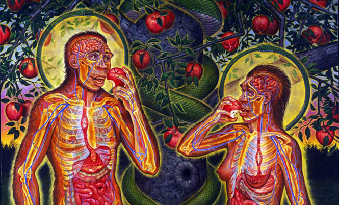 Tüketici olarak paketli gıda ve seri tüketim kültürünün neresindeyiz?