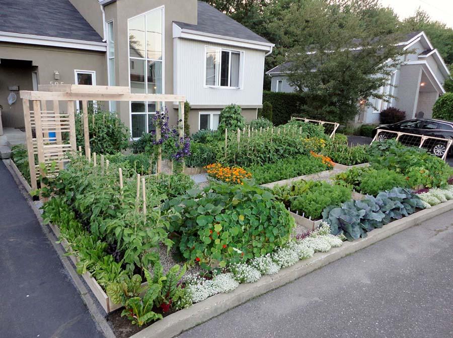 Kent Bahçeleri 4
