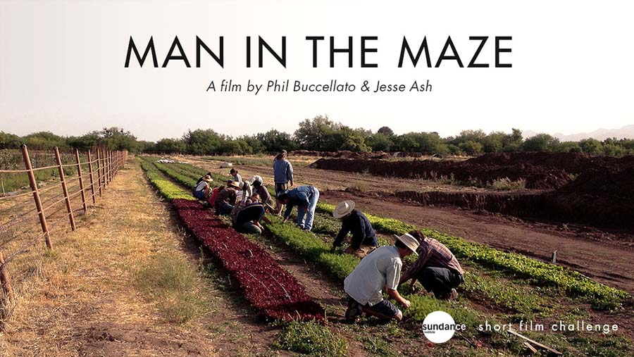 Man In The Maze 1