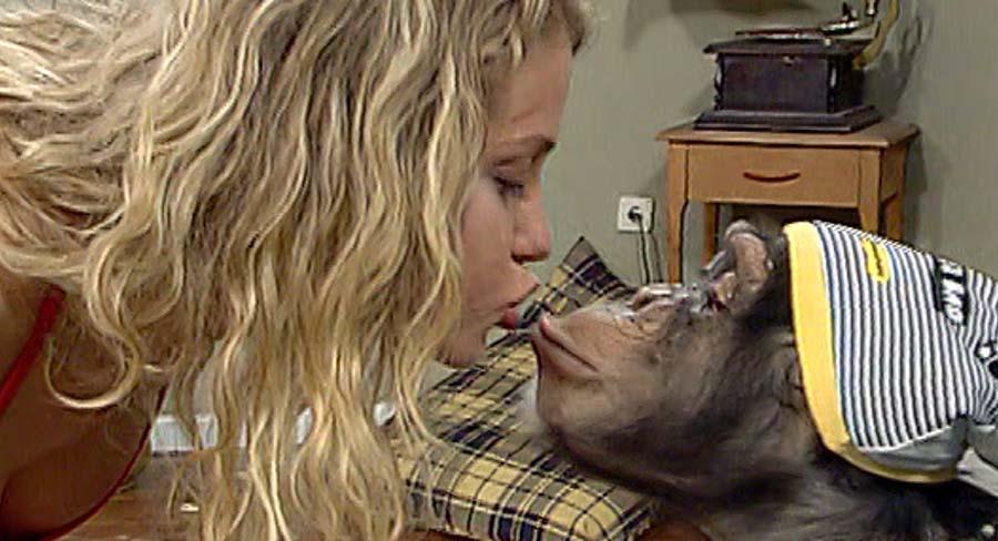 Maymundan insana, insandan maymuna; Şempanze Çarli 5