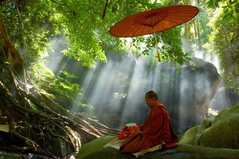 Meditasyon Doğa