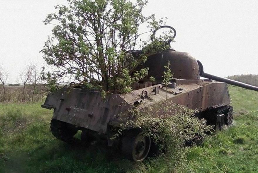 5. Doğanın Ele Geçirdiği Tank