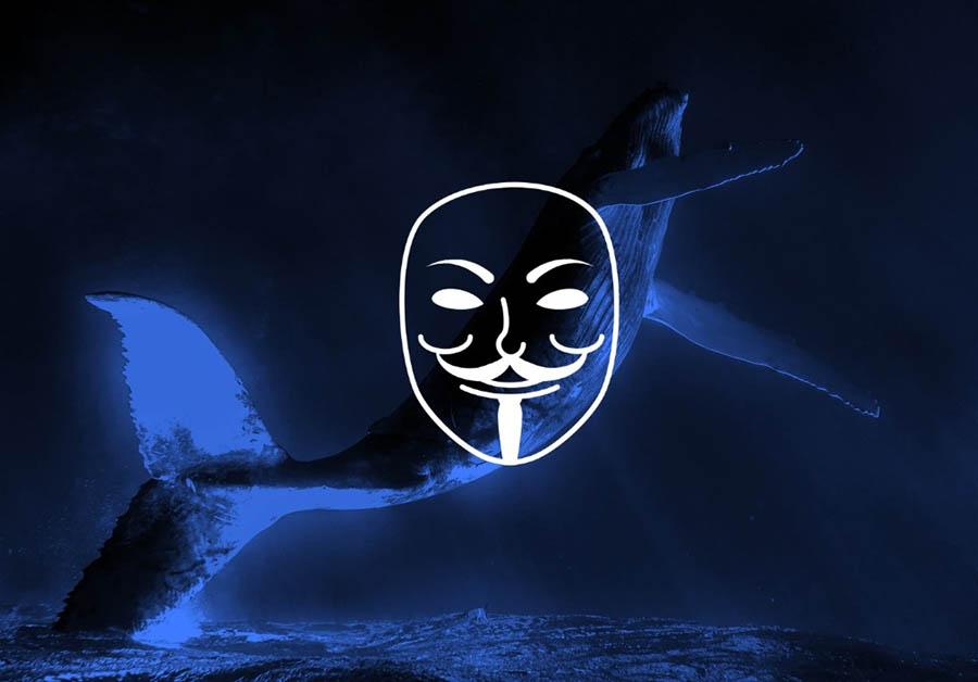 Anonymous İzlanda Balina