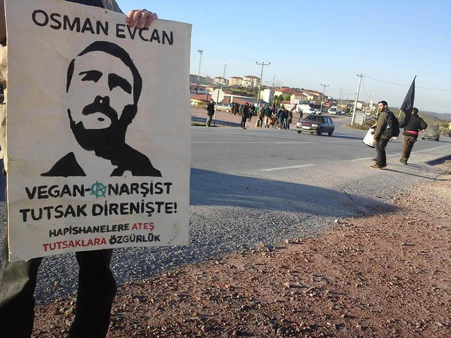 Osman Evcan 6