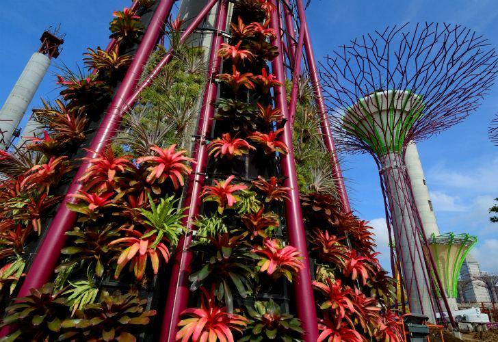 güneş enerjili ağaç 8