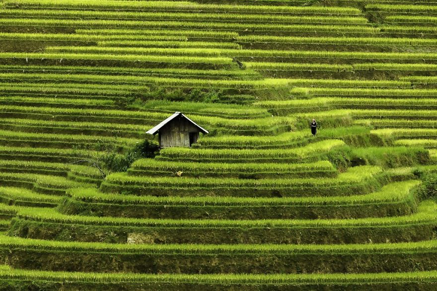 vietnam-mosaic-of-contrasts-by-photographer-rehahn-3__880