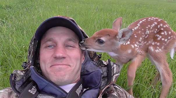 #16 Kurtarıcısını terk etmeyen geyik