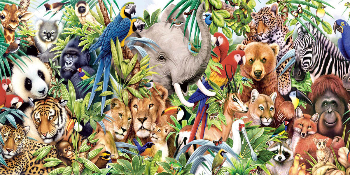 small wild animals wallpapers - photo #33