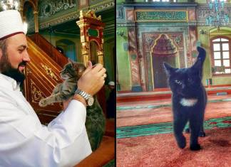 Genç imam Mustafa Efe
