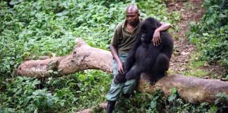 Tek bir fotoğrafla acının tüm canlılar için aynı olduğunu anlamak