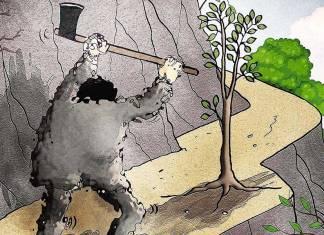 """Karadeniz'in yeşiline iyi haber: Danıştay Yeşil Yol'a """"dur"""" dedi"""