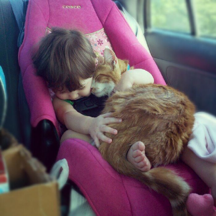 cat-sleeping-with-baby