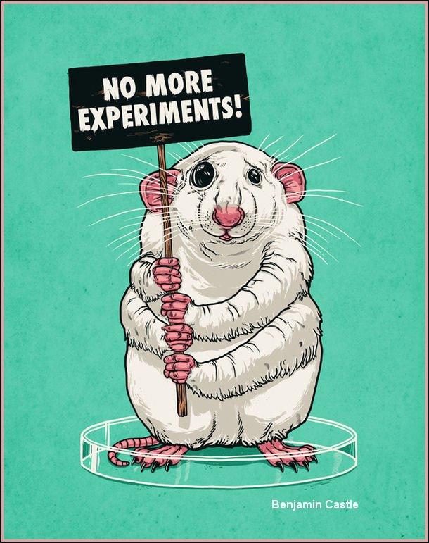 hayvan-deneyleri