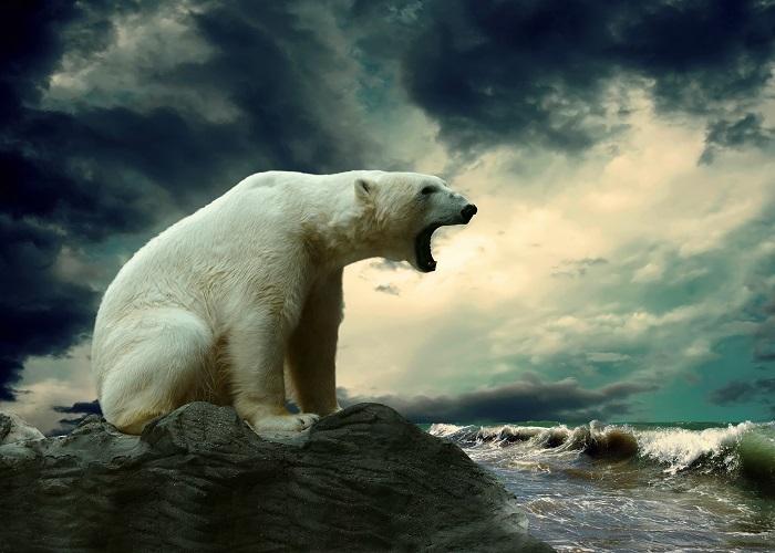 küresel ısınma2