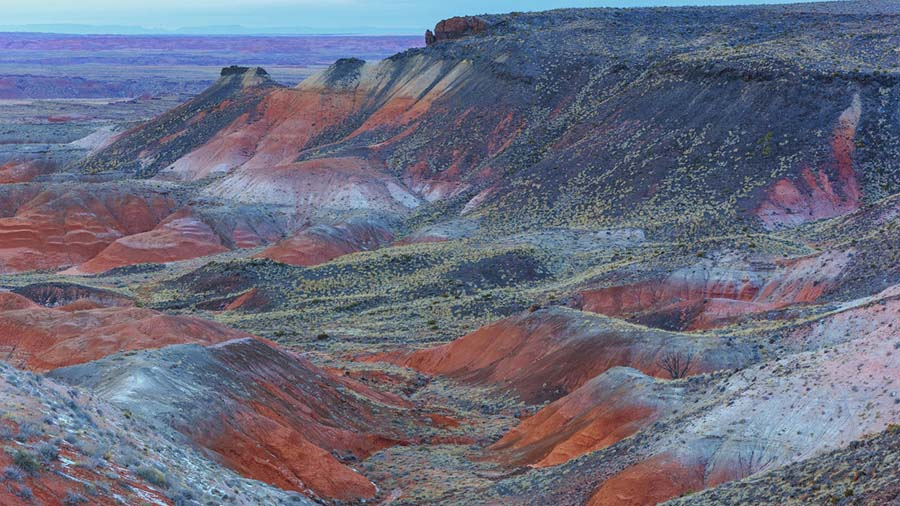 2. Petrified Forest Milli Parki, Arizona
