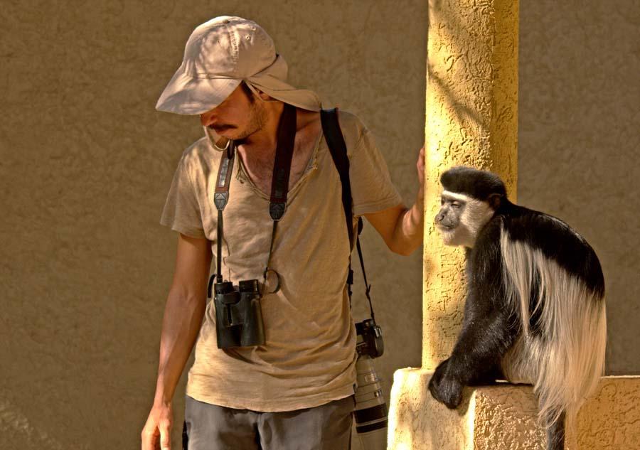Afrika'da bir maymunla dertleşme