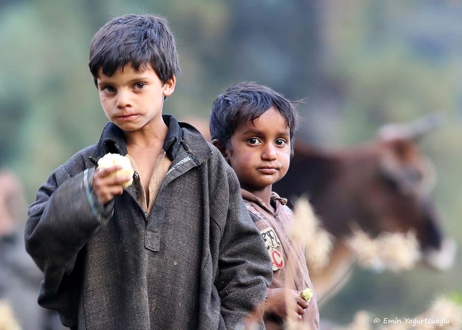 Himalaya dağ köylüleri, Keşmir, Hindistan