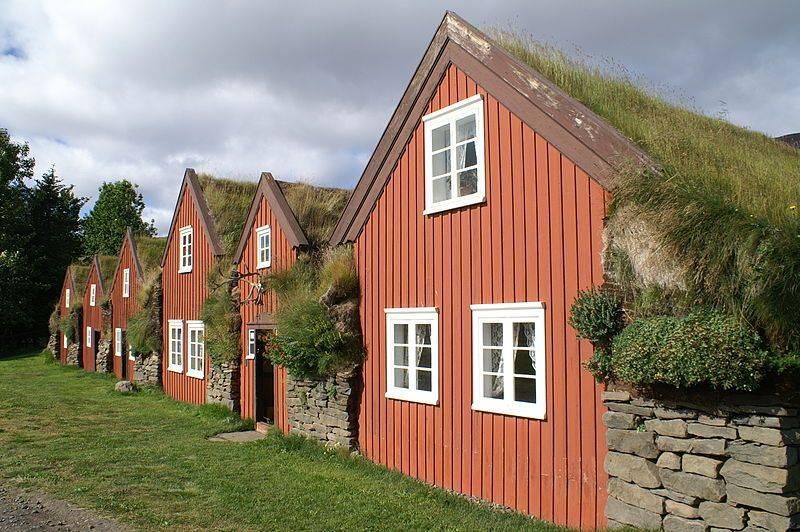 Iceland-Bustarfell-turf