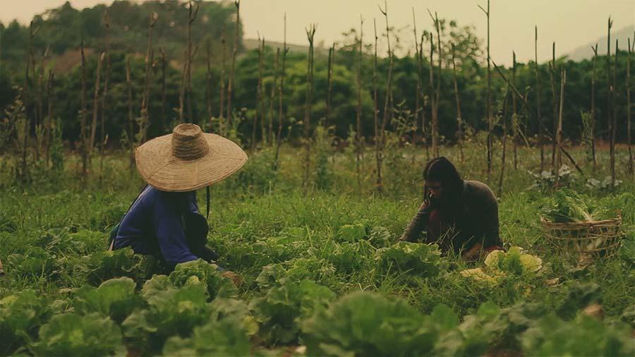 Permaculture A Quiet Revolution (2008)