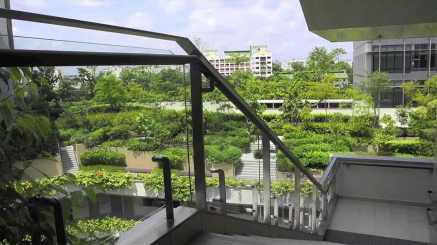 Singapore Biophilic City (2012)
