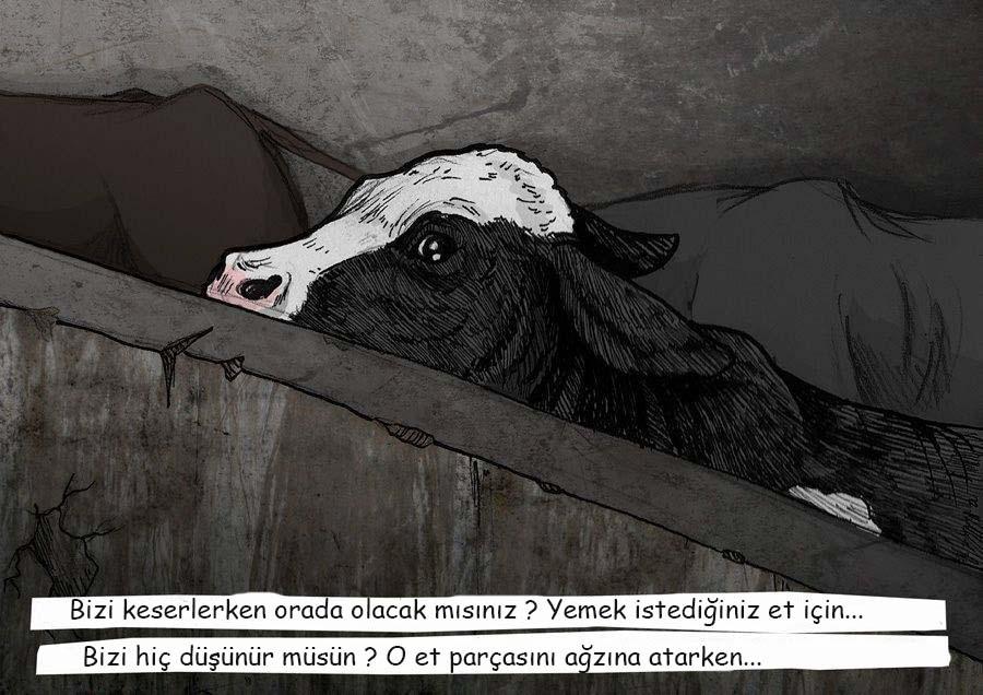 Weronika Kolinska, sut 7