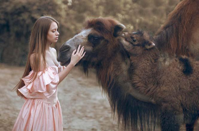 gerçek hayvanlar 11
