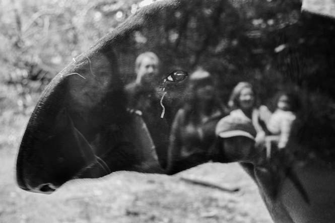 hayvanat bahçesi 1