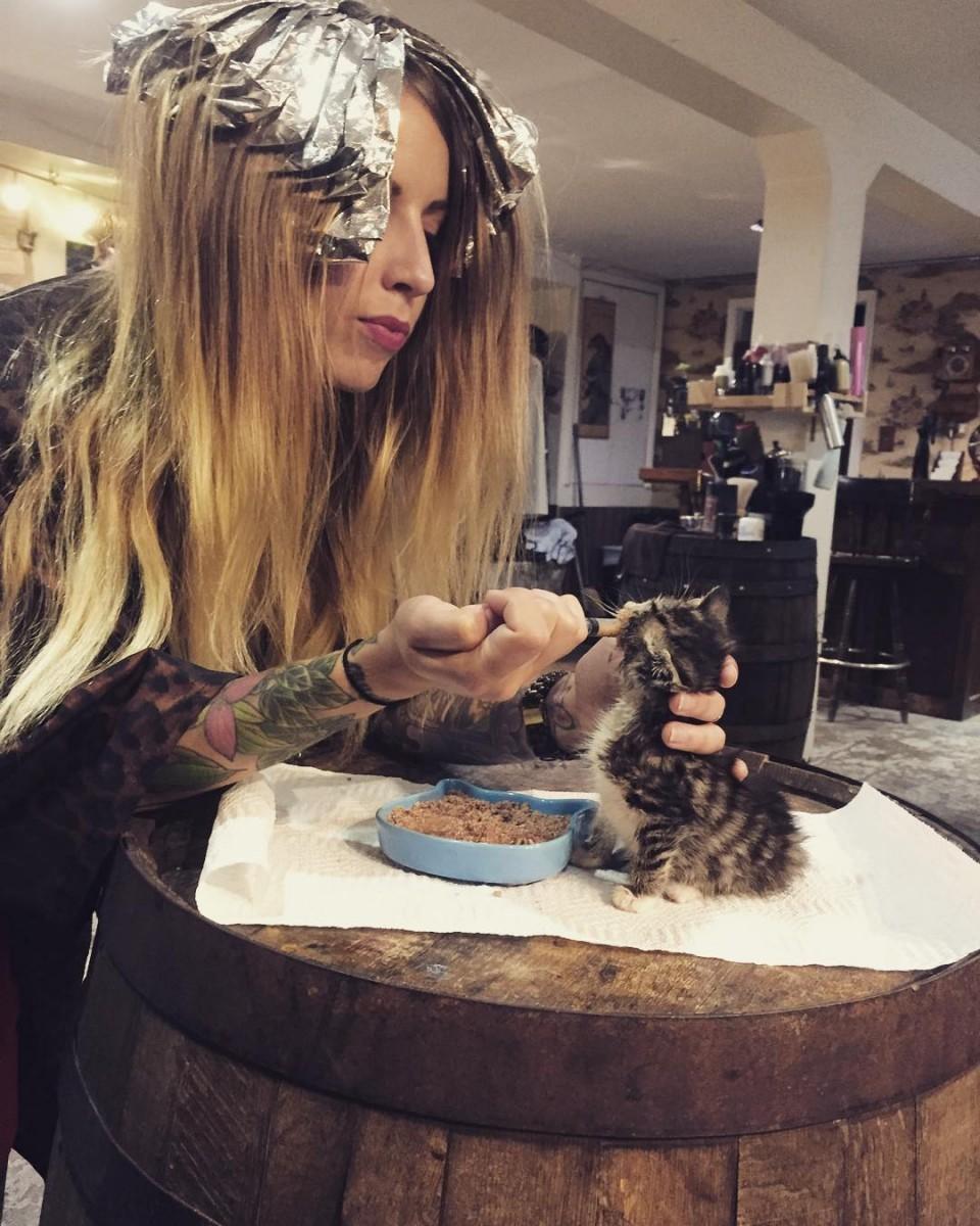 kittenlady 4