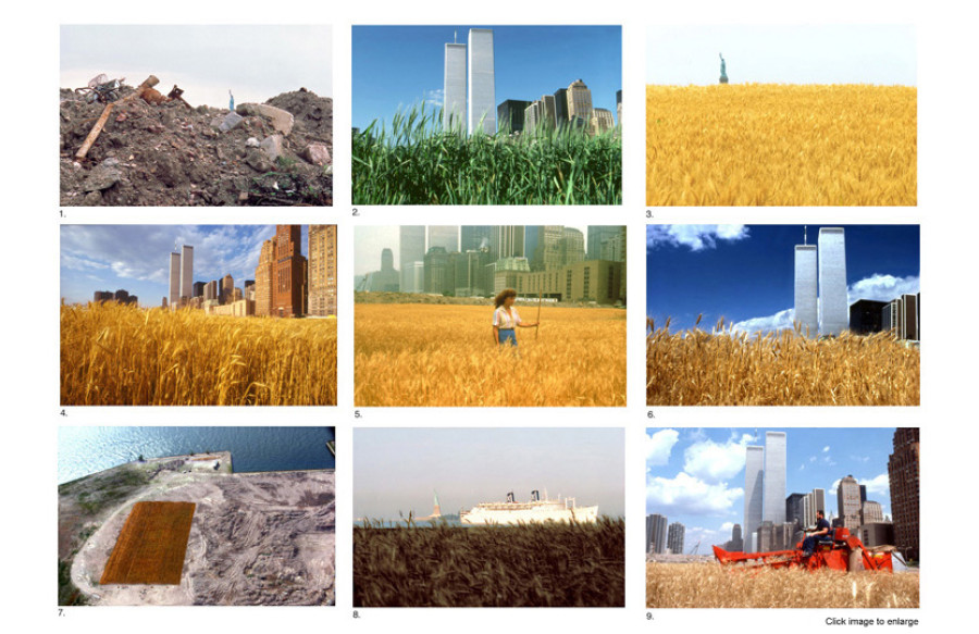 Agnes Denes, Wheatfield, 1982, Courtesy of the artist and Leslie Tonkonow Artworks + Projects