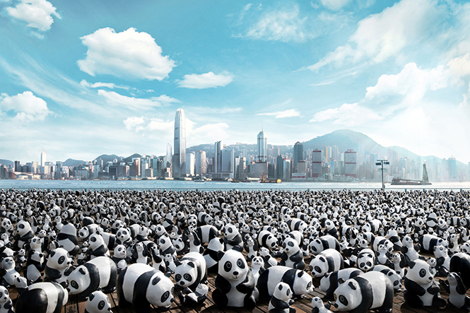 Paulo Grangeon'un 1600 pandasi