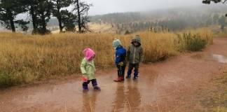 Orman okulları hareketi; doğa bizim yuvamız