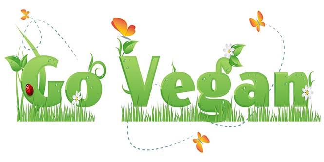 go vegan  100 yaşındaki kalp cerrahı neden 50 yıldır vegan olduğunu anlatıyor go vegan