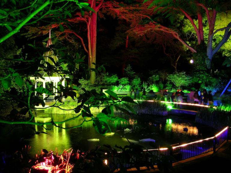 Wellington Botanik Bahçesi - Yeni Zelanda