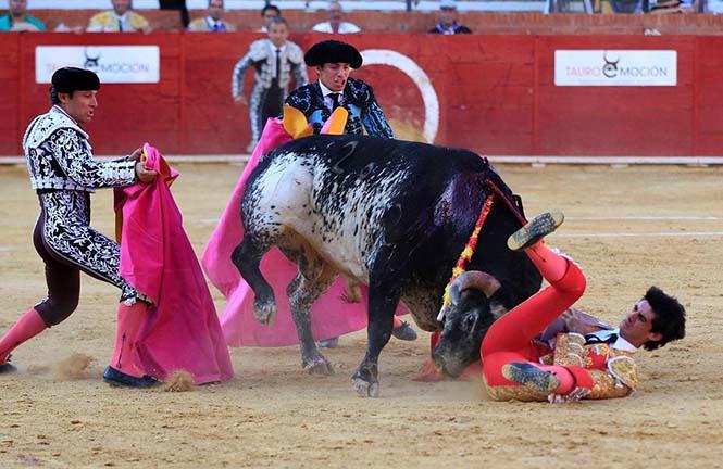 boga-guresi-ispanyol-matador