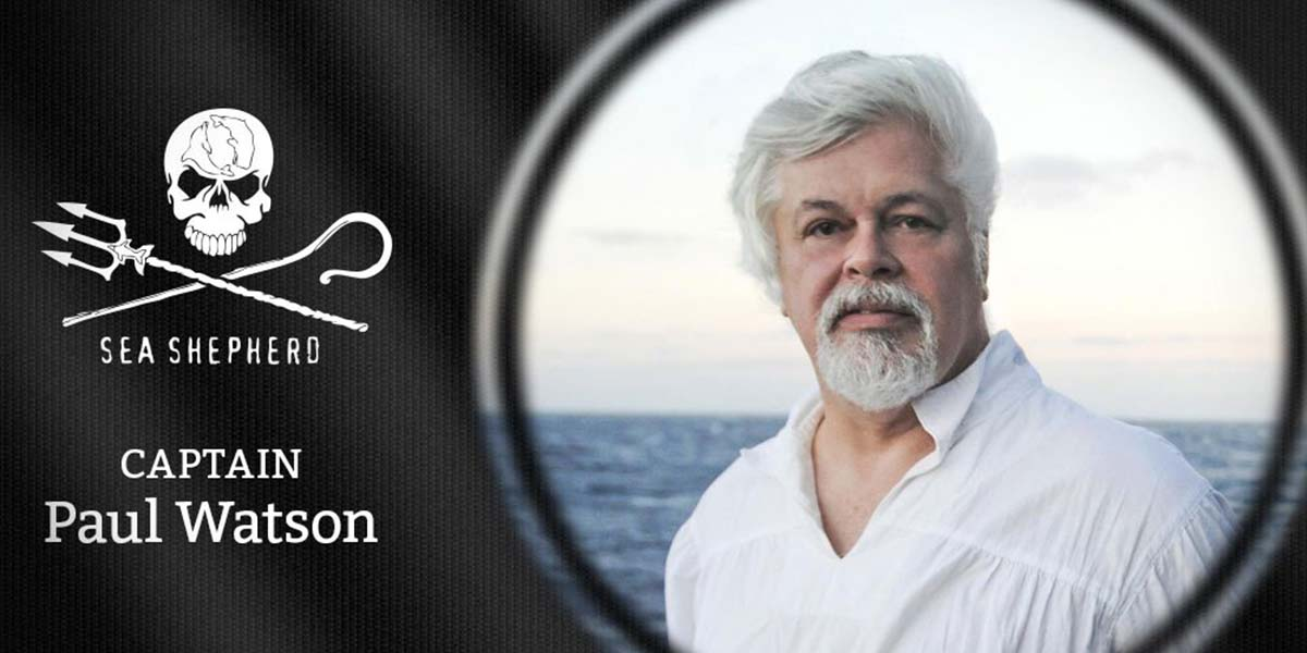paul watson essay Captain paul watson is founder of sea shepherd this essay was originally published on his facebook page bibliography and sources: bunnell, sterling 1974 the evolution of cetacean intelligence.