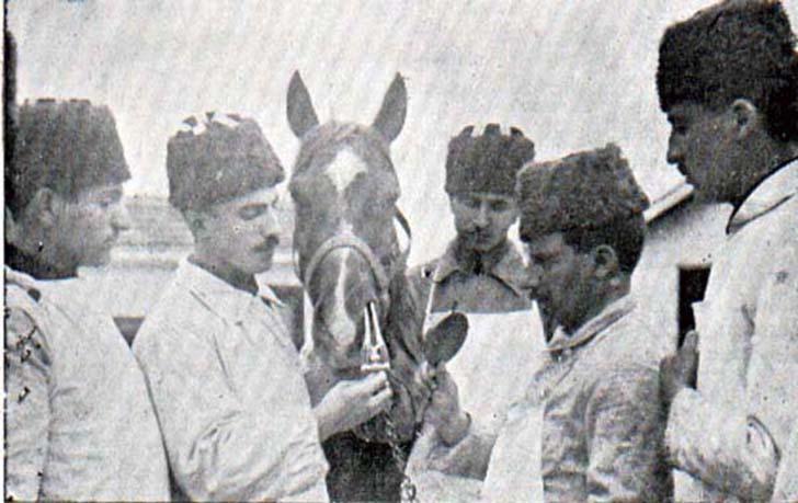 Askeri Baytar Mektebi