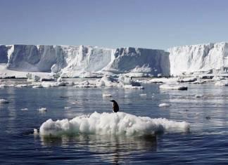 78 kadın iklim değişikliği üzerinde çalışmak için Antartika'ya gitti: Kadınlar keşfi