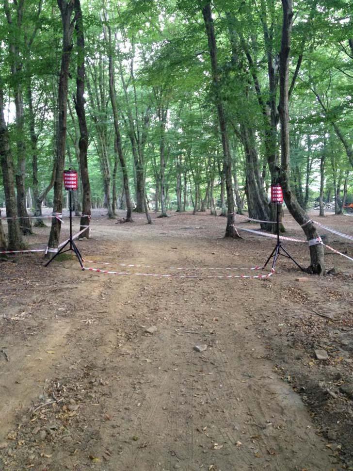 orman kosuları 2