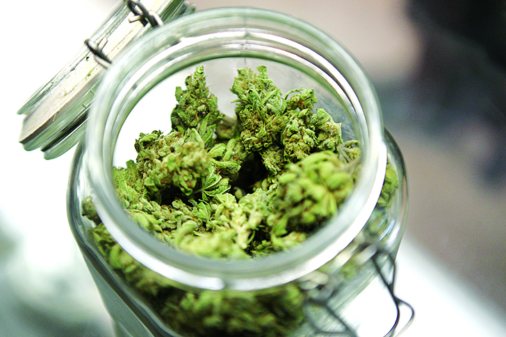 Medical marijuana is shown in a jar at The Joint Cooperative in Seattle  Artan kenevir araştırmaları neden önemli? tibbi kenevir 3