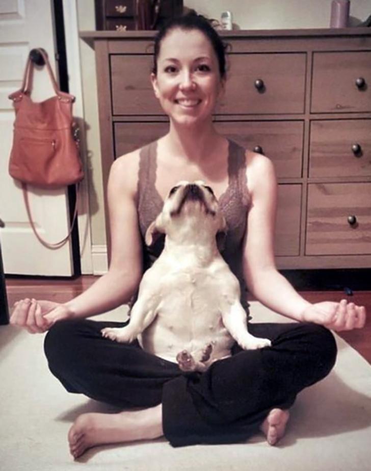 Birbirinden sevimli hayvanlardan yoga pozisyonlari_ 22