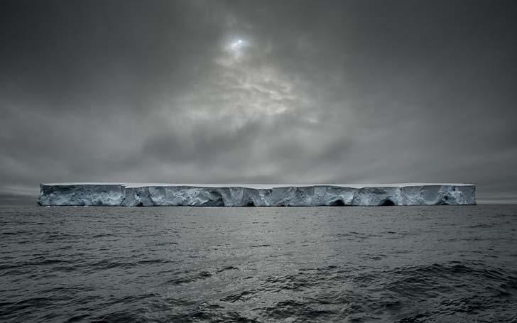 antarktikanin penguenleri 16