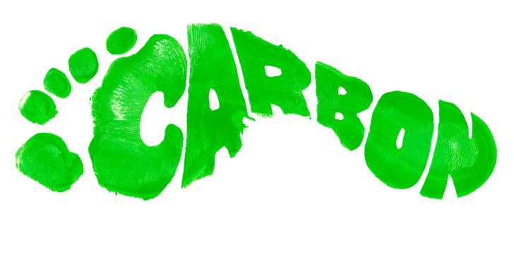 """""""Karbon ayakizimizi nasıl küçültebiliriz?"""" diye soruyorsanız bu eğitim kursu tam size göre"""