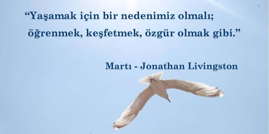 marti-jonathan